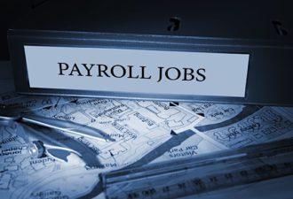 November Nonfarm Payrolls Data