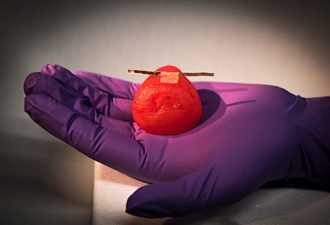 Scientists Work to Grow, Create, Imitate Organs and Tissue