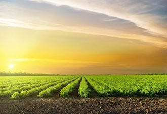 Five Seasons Ventures Invests in European Food and AgriTech