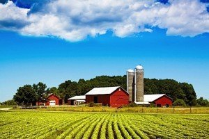 family farm food processing industry agribusiness EDIWeekly
