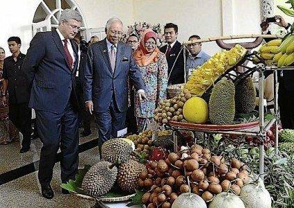 Stephen Harper Najib Malaysia Indonesia Petronas LNG liquefied natural gas BC ecports EDIWeekly