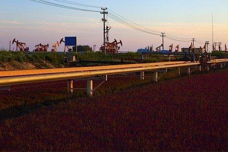 TransCanada KeystoneXL pipeline President Obama Prime Minister Stephen Harper national security advisor Ton Donilon American Petroleum Institute EDIWeekly