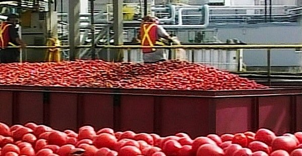 Heinz-Leamington-Highbury-Canco-food-processing-tomatoes-ketchup-Windsor-Chrysler-labour-union-Unifor-government-EDIWeekly