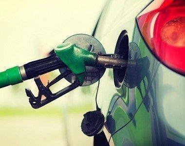 oil gas energy RBC economy government revenue investment EDIWeekly