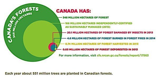 Forestry Products Association Canada greenhouse gas Carbon footprint Paris agreement climate change EDIWeekly