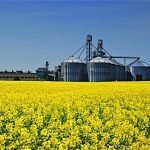 oilseed milling food production agriculture manufacturing Statistics Canada July 2016 EDIWeekly